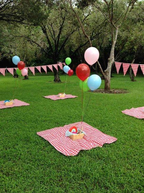 birthday picnic during lockdown