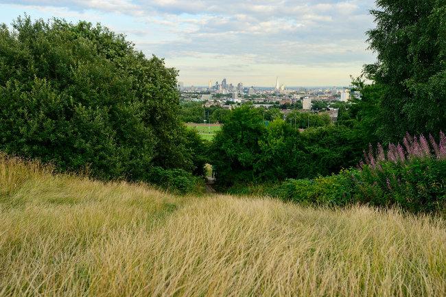 Hampstead circular walk